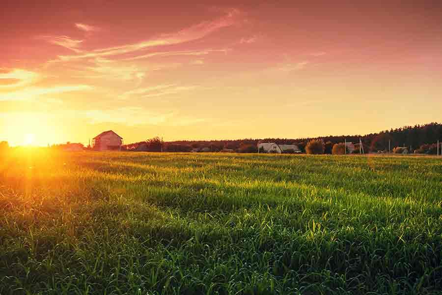 land insurance